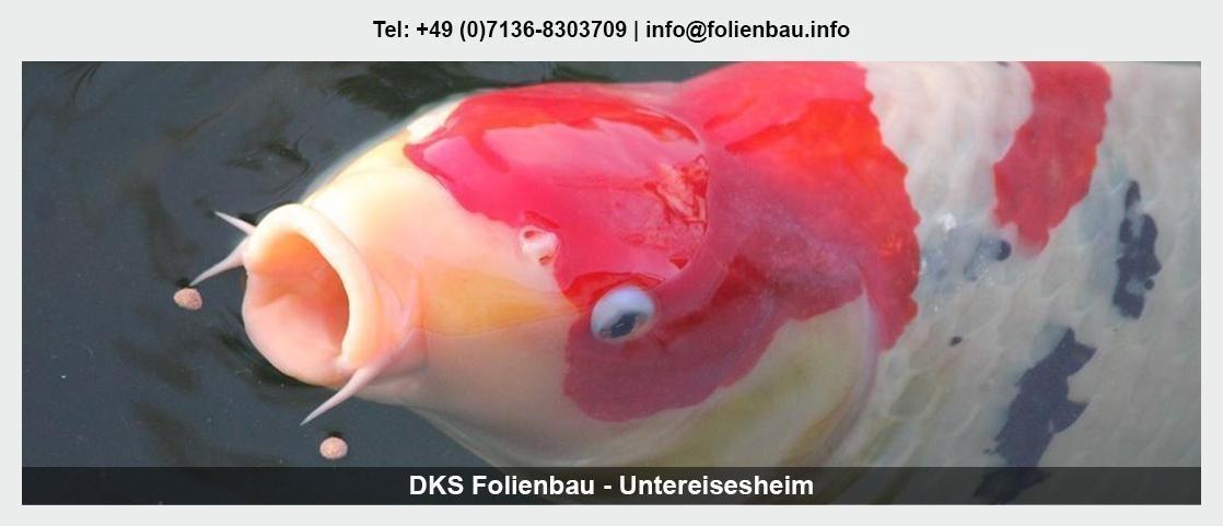 Teichfolie schweißen in Nordrhein-Westfalen - DKS Poolbau & Teichbau: Fischteiche, Leckortung, Poolfolie,